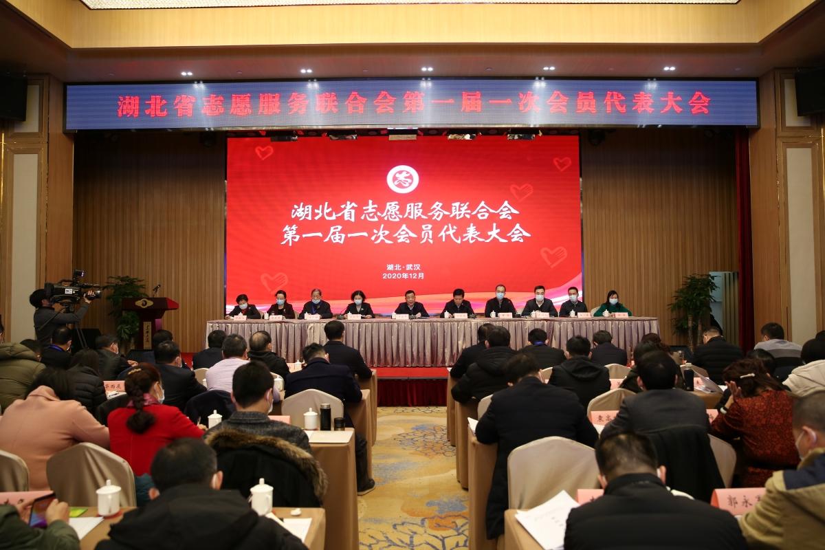 """湖北省志愿服务联合会成立 880多万名志愿者有了""""娘家"""""""