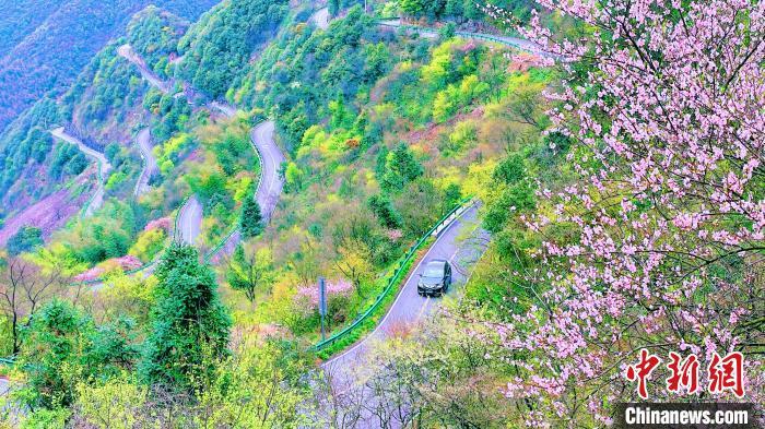 """安徽省泾县的网红打卡地""""皖南川藏线""""上一片生机盎然。 鲍锋 摄"""